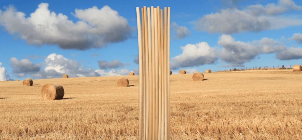 Duurzame rietjes