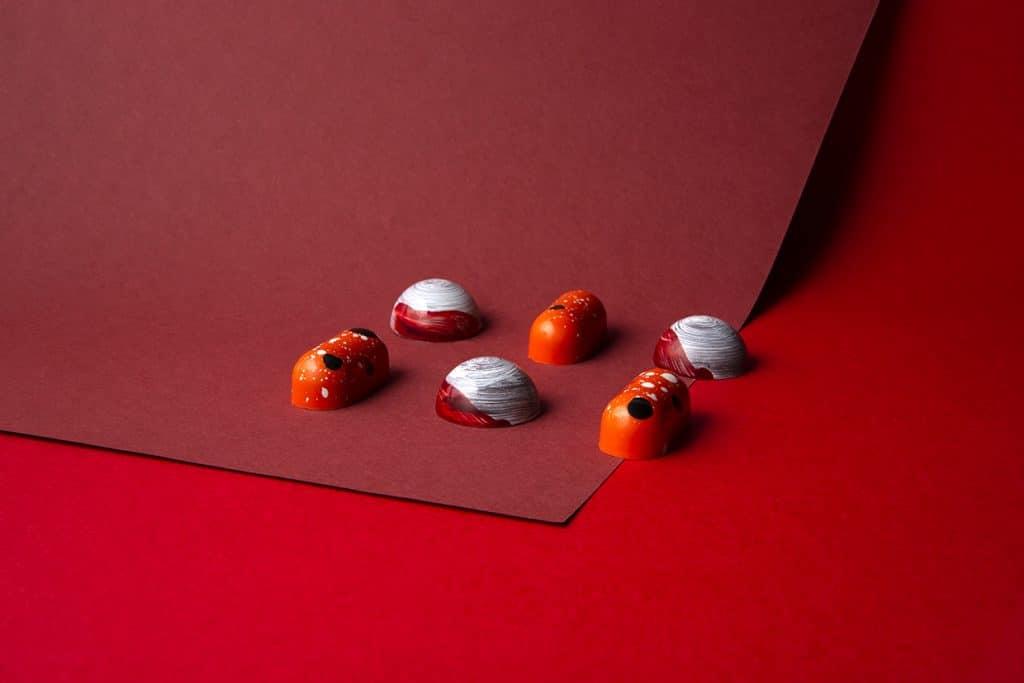 Bijzondere bonbons